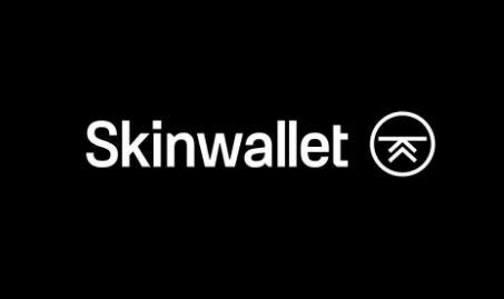 Recensioni Skinwallet