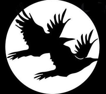 Recensioni The Black Ravens